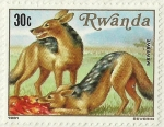 Stamps Africa - Rwanda -  IMBWEBWE