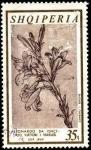 Sellos del Mundo : Europa : Albania : Leonardo da Vinci, 450 aniv. fallecimiento. Flores.