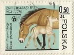 Stamps Poland -  ANIMALES DEL ZOO DE VARSOVIA