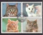 Stamps Asia - United Arab Emirates -  Razas de gatos