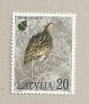 Sellos de Europa - Letonia -  Ave Crex crex