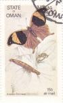 Sellos de Asia - Omán -  Mariposas y larvas -Arpídea Chorinaea