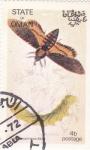 Stamps Oman -  Mariposas y larvas -