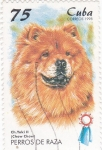 Stamps Cuba -  Perros de raza -CHOW-CHOW