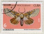 Sellos del Mundo : America : Cuba : Mariposas nocturnas