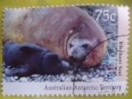 Sellos de Oceania - Australia -  Australian Antarctic Territory . -lephant Seal
