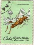 Sellos del Mundo : America : Cuba : Entomofauna
