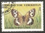 Stamps Uzbekistan -  Mariposa