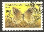 Stamps Asia - Uzbekistan -  Mariposa