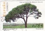 Sellos de Europa - España -  Pino de Fuentepiña- Moguer (Huelva)      (J)