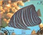 Sellos de Asia - Emiratos Árabes Unidos -