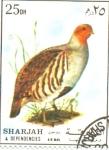 Stamps United Arab Emirates -  aves