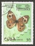 Sellos de America - Cuba -  Mariposa