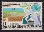 Stamps Spain -  II Año Oleícola Internacional
