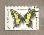 Sellos de Europa - Rusia -  Mariposa Papilio machaon