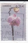 Stamps Spain -  Flora-  naranjo     (k)