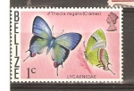 Stamps America - Belize -  LYCAENIDAE
