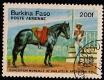 Sellos del Mundo : Africa : Burkina_Faso : EXPOSITION MONDIALE DE PHILATÉLIE ARGENTINA´85