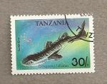 Stamps Africa - Tanzania -  Pez Etmopterus hillianus