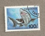 Stamps Africa - Tanzania -  Pez Pristiophorus cirratus