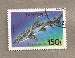 Stamps Africa - Tanzania -  Pez Triacenodon obesus