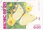 Sellos de Africa - Cabo Verde -  Mariposas- Catopsilia florella