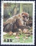 Stamps : Africa : Benin :  Macaco sylvanus