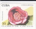 Sellos de America - Cuba -  Flores de Cactus-Pereskia marcanoi