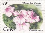 Sellos de America - Cuba -  Flora del Caribe- Vicaria