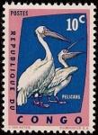 Stamps Africa - Republic of the Congo -  Pelicanos