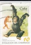 Sellos de America - Cuba -  Evolución del Chimpancé
