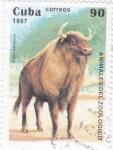 Sellos de America - Cuba -  Animales del Zoológico- Bisón bonasus