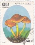 Stamps Cuba -  Setas- Hypholoma fasciculare