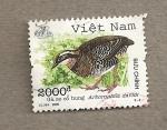 Sellos de Asia - Vietnam -  Ave Arborophila davidi