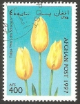 Stamps Afghanistan -  Flor tulipan