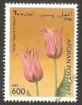Stamps Afghanistan -  Flor tulipan