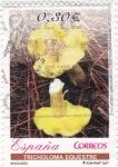 Stamps Spain -  Micología- Tricholoma equestre        (N)