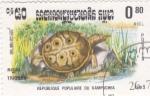 Sellos de Asia - Camboya -  TORTUGA