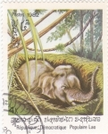 Stamps Laos -  CACHORRO DE ELEFANTE