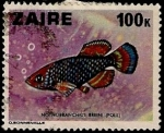 Stamps : Africa : Democratic_Republic_of_the_Congo :  Peces
