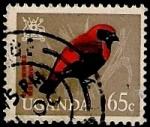 Stamps Africa - Uganda -  Pajaro