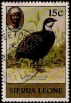 Stamps Africa - Sierra Leone -  Pajaro