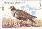 Stamps Spain -  Fauna hispánica- Ortega pterocles orientalis        (Ñ)