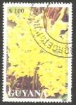Sellos de America - Guyana -  Flor