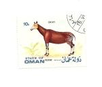 Stamps Asia - Oman -  fauna  OKAPI