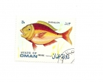 Stamps Oceania - Oman -  fauna PECES - Sparaillon - oreja de buey o Palometa