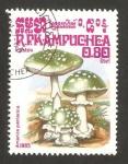 Stamps : Asia : Cambodia :  Kampuchea 578 - Champiñón amanita panterina