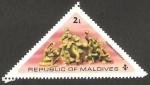 Stamps Maldives -  534 - Fauna marina