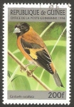 Stamps : Africa : Guinea :  Ave carduelis cucullata