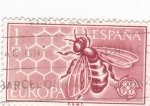 Stamps Spain -  Europa-CEPT 1962            (o)